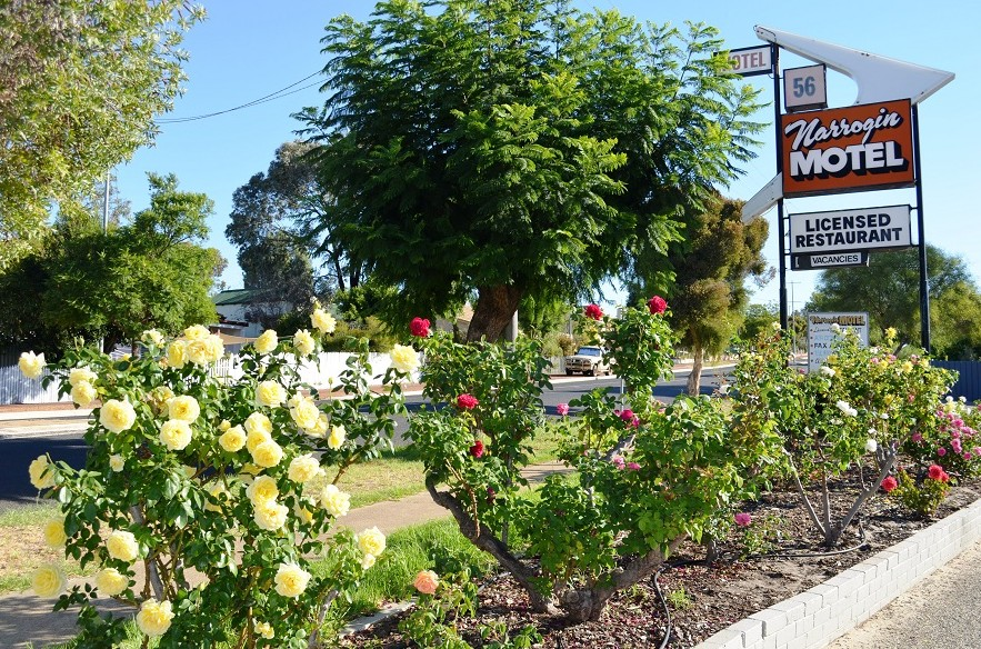 Narrogin Motel - Accommodation Broken Hill
