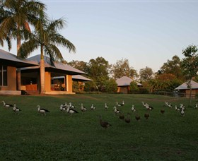 Feathers Sanctuary - Accommodation Broken Hill