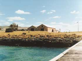 Mt Dutton Bay Woolshed Hostel - Accommodation Broken Hill