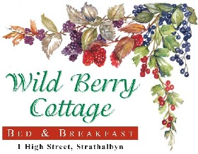Wild Berry Cottage - Accommodation Broken Hill