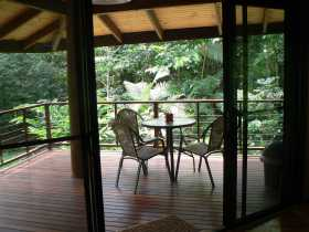 Cape Trib Exotic Fruit Farm Bed and Breakfast - Accommodation Broken Hill