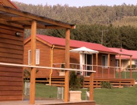 Maydena Country Cabins Accommodation  Alpaca Stud - Accommodation Broken Hill