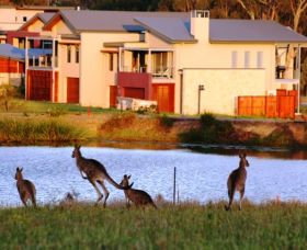 Grand Mercure The Vintage Hunter Valley - Accommodation Broken Hill