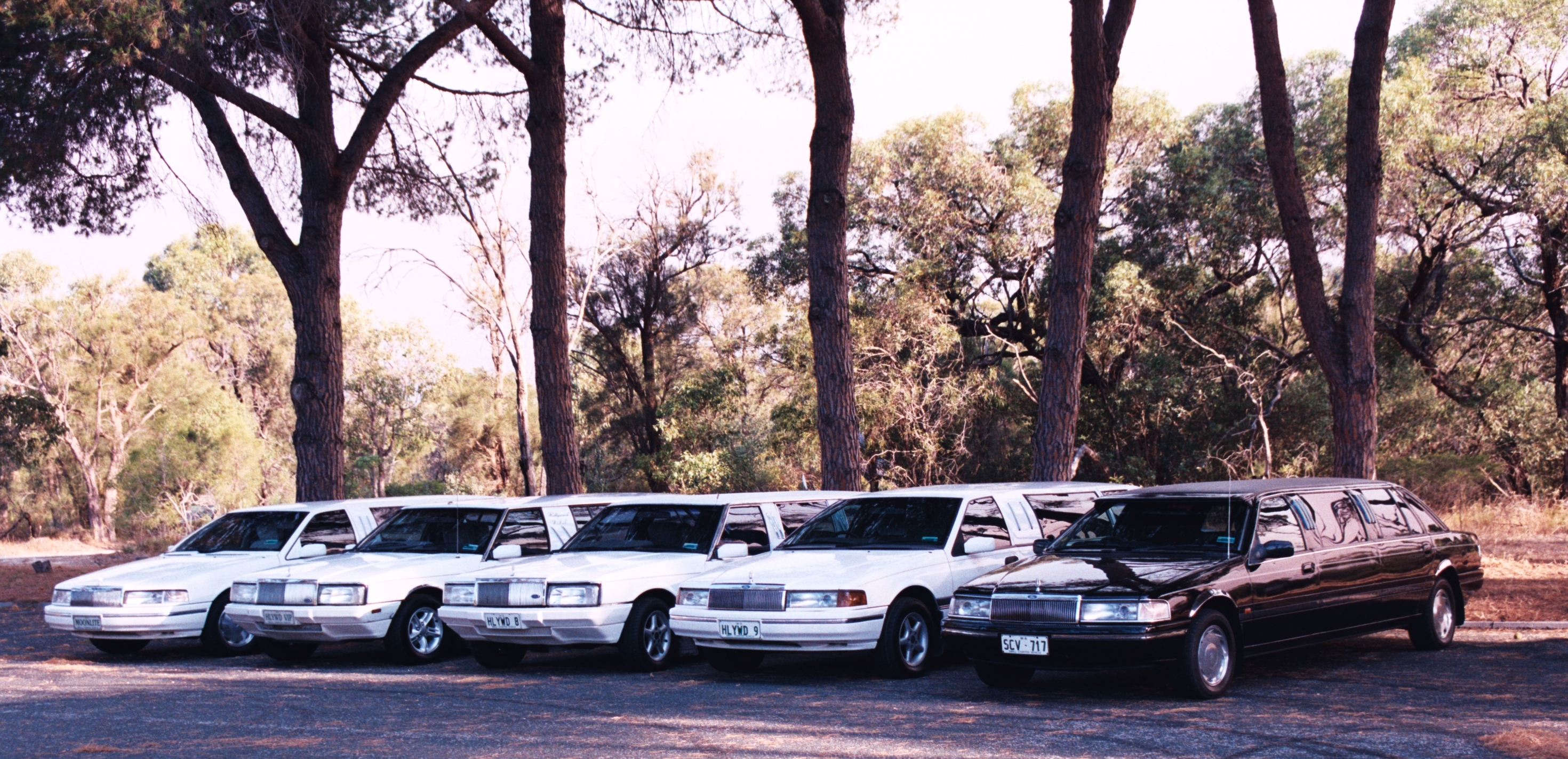 Hollywood VIP Limousines - Accommodation Broken Hill