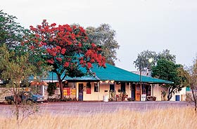 Wauchope Hotel and Roadhouse - Accommodation Broken Hill