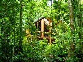 Fur'N'Feathers Rainforest Tree Houses - Accommodation Broken Hill