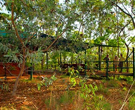 Arnhemland Barramundi Nature Lodge - Accommodation Broken Hill