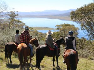 Reynella Homestead and Horseback Rides - Accommodation Broken Hill