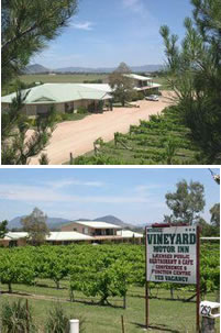 Mudgee Vineyard Motor Inn - Accommodation Broken Hill