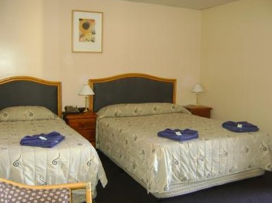 Mudgee Motor Inn - Accommodation Broken Hill