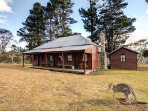 The Pines Cottage - Accommodation Broken Hill