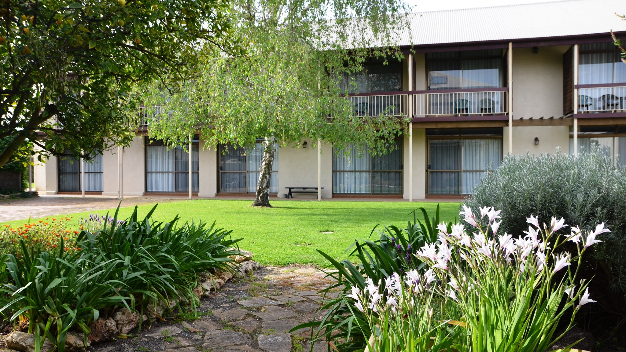 Coonawarra Motor Lodge - Accommodation Broken Hill