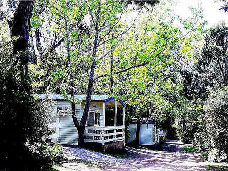 Flinders Caravan Park - Accommodation Broken Hill