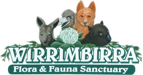 Wirrimbirra Sanctuary - Accommodation Broken Hill
