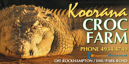 Koorana Saltwater Crocodile Farm - Accommodation Broken Hill