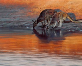 Steve Morvell Wildlife Art - Accommodation Broken Hill