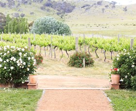 Brindabella Hills Winery - Accommodation Broken Hill