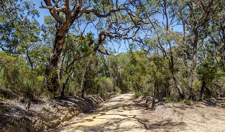 Howes trail - Accommodation Broken Hill