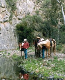 Yarramba Horse Riding - Accommodation Broken Hill