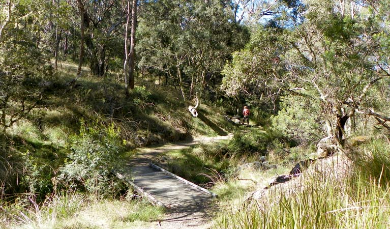 Wollomombi walking track - Accommodation Broken Hill