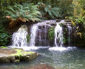 Barrington Tops National Park Walks - Accommodation Broken Hill