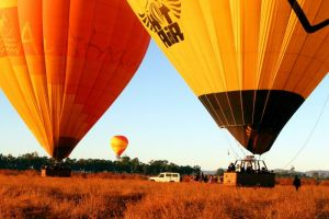 Hot Air Balloon Scenic Rim - Accommodation Broken Hill