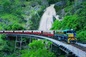 Full-Day Tour with Kuranda Scenic Railway Skyrail Rainforest Cableway and Hartley's Crocodile Adventures from Cairns - Accommodation Broken Hill