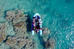 Glass-bottom boat tour with Whitehaven Beach - Accommodation Broken Hill