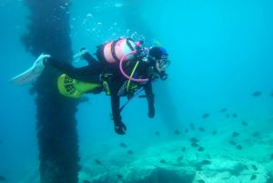 Shellharbour Scuba  and Photography Centre - Accommodation Broken Hill