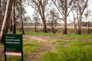 Gemmill Swamp Wildlife Reserve - Accommodation Broken Hill