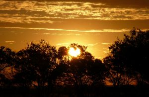 Paroo-Darling National Park - Accommodation Broken Hill
