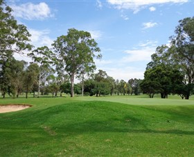 Singleton Golf Club - Accommodation Broken Hill