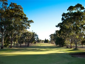 Loxton Golf Club - Accommodation Broken Hill