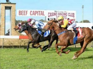 Casino Cup - Accommodation Broken Hill
