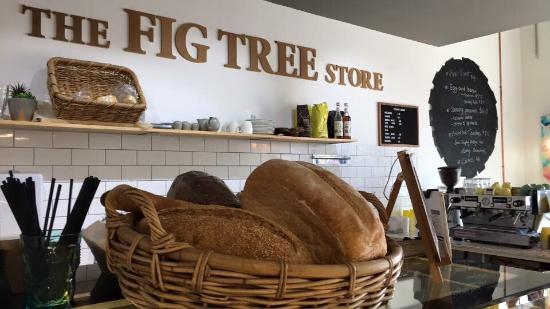 The Fig Tree store - Accommodation Broken Hill